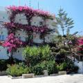 Skala Hotel, Patmos Hotels information and reviews