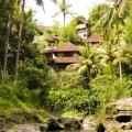 Bali Spirit Hotel & Spa, Ubud Hotels information and reviews