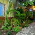 Ajijic Plaza Suites, Ахихик Hotels information and reviews