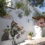 Elenis Studios Ornos