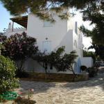 Elenis Studios - Ornos