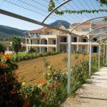 Alkioni Hotel Kefalonia