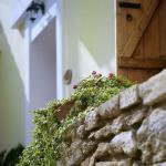 Petronikolis Traditional House