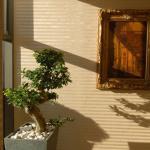Hotel Divinus - Debrecen