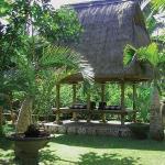 Bali Spirit Hotel - Garden