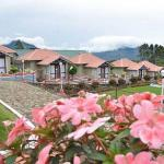 Holiday Heaven Munnar Villas