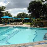 Pool Impala Hotel Pool