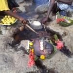 Hotspring Feast