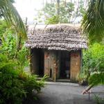 Tanna Melanesian Bungalows