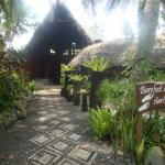 Tanna Lodge Bare Foot Luxury