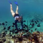 Snorkelling in Port Vila