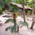 Tranquillity Island Resort